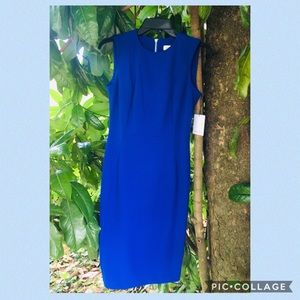 Calvin Klein Dress Size 2 (New with tags)